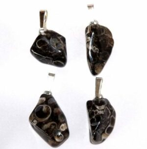 pendentif agate fossile